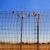 לבטל את המעצר שנועד לכפות על מבקשי מקלט לצאת למדינה שלישית